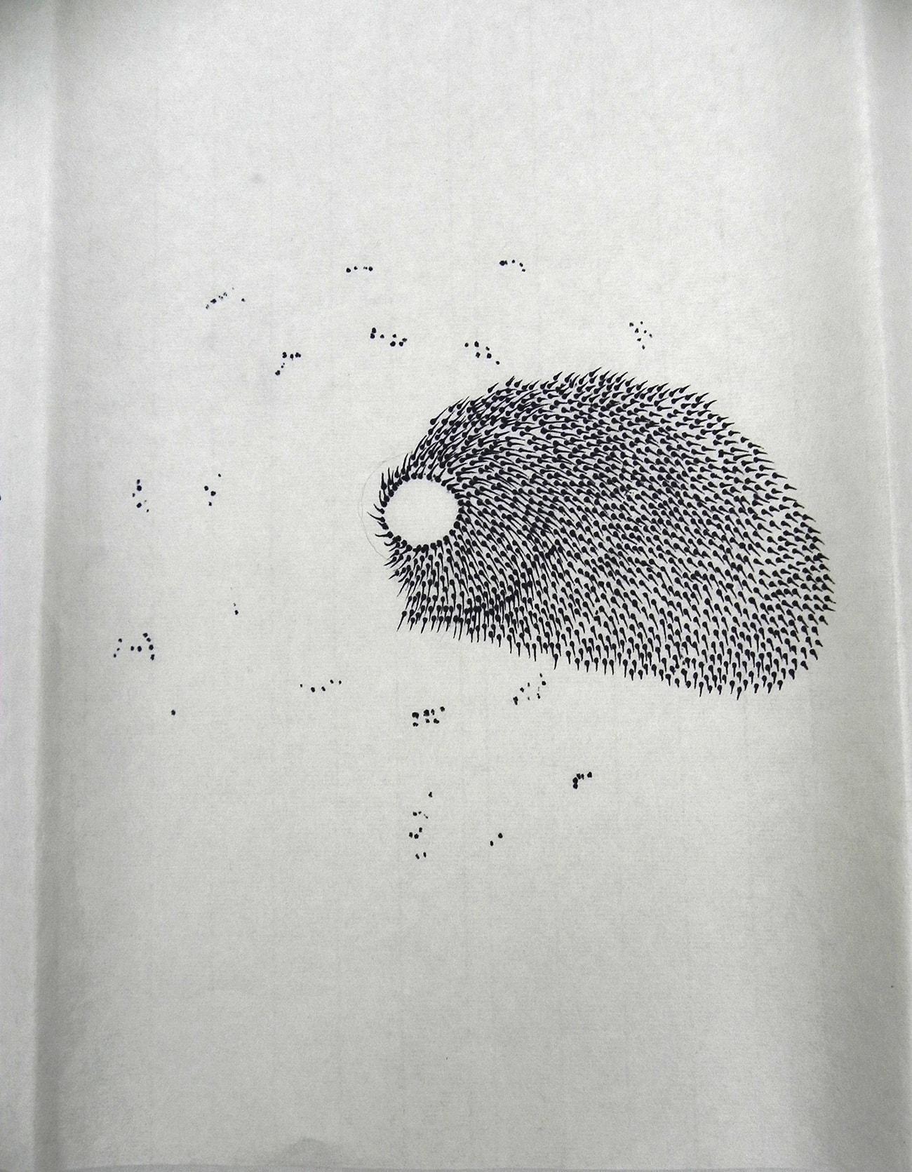 Consecutive Drawings 5D - Isabel Gómez Liebre