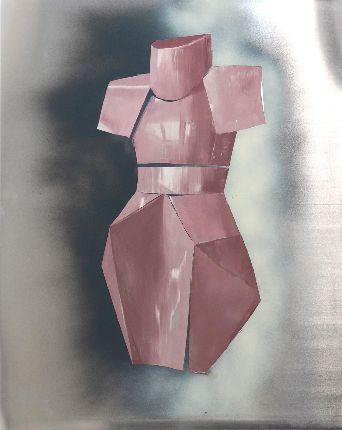 Pink armor - Isabel Gómez Liebre